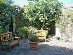 Southlands Chapel Garden