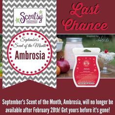 Last Chance to order AMBROSIA SCENT!  The sweetest fruit salad ever: tropical pineapple, mandarin orange slices, juicy pears, and ripe concord grapes with hints of jam and fruit nectar! Enjoy 10% off! http://www.victoriaphillips.scentsy.ca