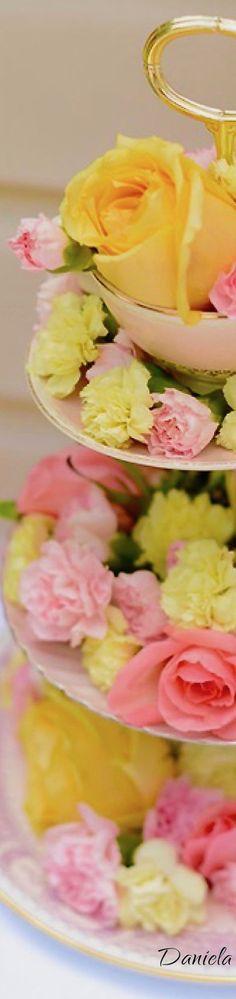 Seasons Poem, Four Seasons, Mellow Yellow, Pink Yellow, Seasonal Image, Royal Tea, Yellow Springs, Kids Board, Spring Party