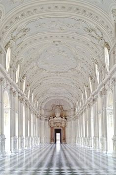 AMEDEO DI CASTELLAMONTE, PALACE OF VENARIA: near turin, italy; built in 1675.