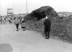 Bergen Belsen, Germany, A pile of unidentified belongings, 1945.