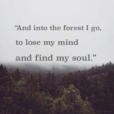 And into the forest i go, to lose my mind and find my soul -John Muir Trekking Quotes, Hiking Quotes, Travel Quotes, Quotes About Hiking, Hiking Meme, The Words, John Muir, Quotes To Live By, Me Quotes