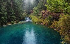 Download wallpapers McKenzie River, mountain river, forest, mountains, USA, Oregon, United States