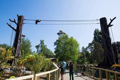 Dublin Zoo, Orangutan enclosure