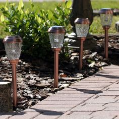 Smart Solar 3426WRM6-HC Charleston 6-Pack Solar Lights, Copper by Smart Solar. $43.88. Automatically illuminates at dusk and turns off at dawn. Up to 8 hours of light each night when fully charged. Energy saving white LED in each light. Stainless steel, with an electroplated copper finish and real glass shade. On/off switch to control light. Set of 6 decorative solar lights ideal for pathways, driveways and gardens.  Stainless steel, with an electroplated copper finish ...