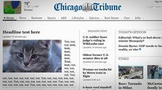 The Chicago Tribune Has Made the Best Internet Mistake of the Day-Or Proof That Kittens Rule The Internet. Test Text, News Fails, Funny Headlines, Care Jobs, Google Custom, Breaking News Today, Cat Posters, Chicago Tribune, Cat Sitting