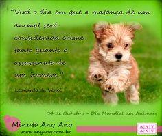 Hoje é dia de fazer festinha, abraçar, paparicar e curtir muito aquele que sempre festeja a sua companhia! Dia Mundial dos Animais 04 de Outubro