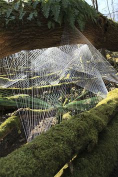 Cocoon ~ Installation of cotton fibre France 2009 Installation : Sébastien Preschoux Landscape Art, Landscape Architecture, Landscape Design, Land Art, String Installation, Art Installations, Art Actuel, Man Vs Nature, Art Environnemental