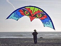 Windstar Kites presents the Skydancer quad line kite Kite Surf, Go Fly A Kite, Kite Building, Bird Kite, Flying Balloon, Kite Making, Kite Designs, Stunt Kite, Wooden Projects