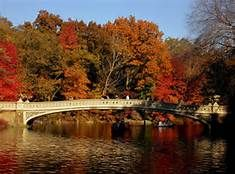 Bow Bridge Central Park - Bing Images
