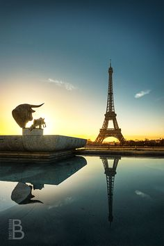 Eiffel Tower in the cold morning