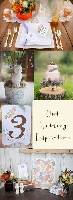 owl wedding inspiration  coolest cake I've ever seen!