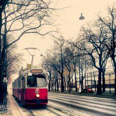 Straßenbahn, Wien - my mode of transportation for 4 months