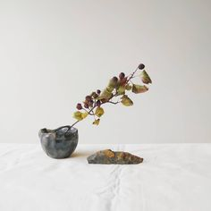 Most current Pictures Ceramics Art minimal Style – Ikebana – Stillness of the light. Ikebana, Current Picture, Slow Design, Organic Shapes, Handmade Pottery, Wabi Sabi, Ceramic Art, Stoneware, Craft Art