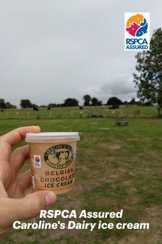 Delicious Caroline's Dairy RSPCA Assured ice cream at Bignor Roman Villa, a great reward after solving the Maize Maze. Food Labels, Animal Welfare, Maze, Better Life, Feel Good, Life Is Good, Roman, Dairy, Villa