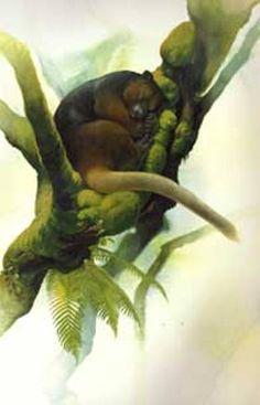 Kanguru pohon wondiwoi merupakan satwa endemik yang hanya ditemukan Pulau Papua. Diperkirakan jumlahnya tinggal 50 ekor saja.