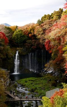 Autumn.. Shiraito Falls, Fujinomiya, Japan