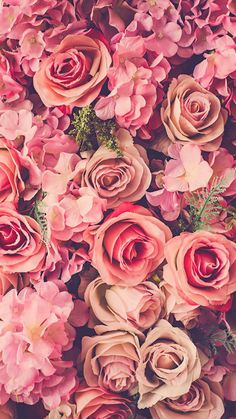 Five Floral Wallpaper For Iphone That Had Gone Way Too Far Floral Wallpaper Iphone, Gold Wallpaper, Wallpaper Pictures, Flower Wallpaper, Bunch Of Flowers, Love Flowers, Floral Flowers, Colorful Flowers, Beautiful Flowers