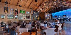 1000 Images About Hard Rock Cafe On Pinterest Dubai