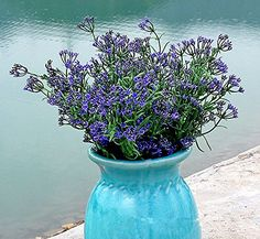 REAL TOUCH artificial flowers - Babysbreath Grass 6 bunches - Purple: Amazon.co.uk: Garden & Outdoors