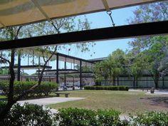 Sarasota Florida, Modern Architecture, High School, Windows, Google Search, Grammar School, Modernism, High Schools, Contemporary Architecture