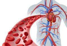 8 Foods That Lower Blood Pressure #BloodPressureRaise