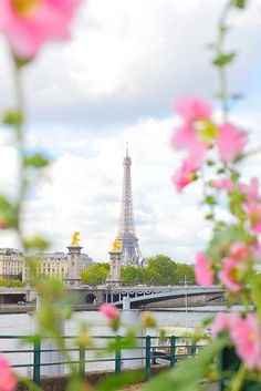 A classic shot of Paris