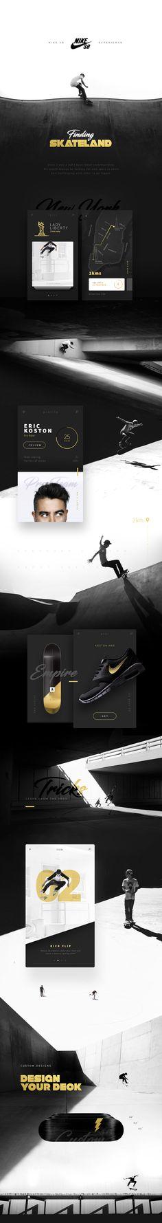 Nike SB Concept