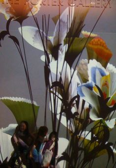 http://www.bing.com/images/search?q=fischli and weiss flowers