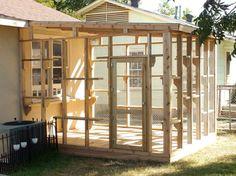 the cat carpenter hyde park catio                                                                                                                                                                                 More                                                                                                                                                                                 More