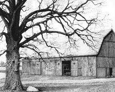how to draw an oak tree, oak tree art, oak trees in art, pen and ink lesson