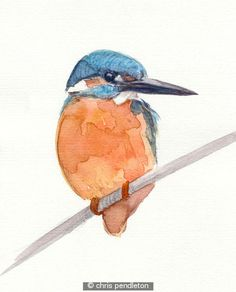 Kingfisher. - Simplicity. Art doesn't have to be complicated.