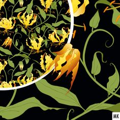 "My entry for the ""Hand-drawn florals"" @Spoonflower Design-Challenge at www.spoonflower.com/design-challenge. #spoonflower #spoonflowerde #gloriosa #floral #floralillustration #botanicalillustration #designchallenge #graphicdesign #igersaustria #patternartist #exoticflower #seamlesspattern #exoticplants #vines #surfacepattern #igerslinz #floraldesign #handdrawnfloral #stoffmuster #aboutpattern #surfacepatterndesign #textiledesign #womenillustrators #womenwhodraw #ruhmeskrone #gloriosalily Exotic Plants, Exotic Flowers, Floral Illustrations, Botanical Illustration, Of Wallpaper, Pattern Wallpaper, Spoonflower, Gloriosa Lily, Buy Fabric Online"