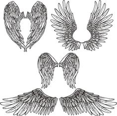 Buy Wings Sketch Set by macrovector on GraphicRiver. Angel or bird wings abstract sketch set isolated vector illustration. Editable EPS and Render in JPG format Angel Wings Art, Bird Wings, Angel Art, Angel Wings Painting, White Angel Wings, Wings Sketch, Bird Sketch, Angel Sketch, Abstract Sketches