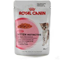 Billedresultat for kitten food