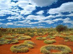 Australia #Deserto #desert