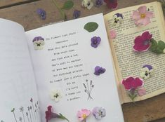 Published in Pressed Dreams and Forgotten Flowers (November Flower Poetry, Dried Flowers, Photo And Video, Instagram, Flower Preservation, Dry Flowers