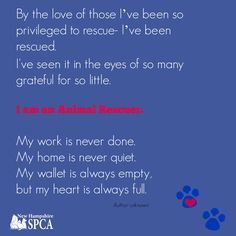 Be an animal Rescuer.  Adopt. Donate. Volunteer at the New Hampshire SPCA.
