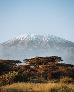 """Polubienia: 347, komentarze: 17 – James Mason (@jamesmason__) na Instagramie: """"From a young age I remember seeing images of Kili raising majestically above the African plains in…"""" Kili, See It, Raising, Sketches, African, Inspire, Mountains, Books, Travel"""