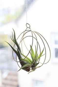 pot à fleurs en métal à suspendre pour exhiber les plantes sans terre avec raffinement