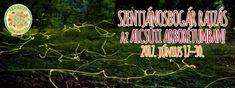 Szentjánosbogár tánc az Alcsúti Arborétumban, éjszakai fényjáték