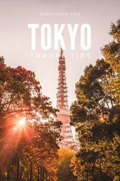 Are you traveling Tokyo Japan soon? What are the best things to do in Tokyo on a budget? How to save money and travel to Japan on the cheap? Read here to find out 10 BEST tips for traveling to Tokyo on a budget! Tips from visiting free places in Tokyo to local way to save money on transportation and budget accommodation in Tokyo. #tokyo #japan #budgettravel #travelguide Tokyo Travel Guide, Tokyo Japan Travel, Japan Travel Guide, Asia Travel, Travel Guides, Wanderlust Travel, Places To Travel, Travel Destinations, Places To Go