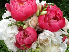 Wonderful color pop with these Peonies!