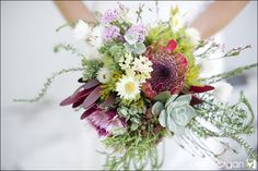 Amazing fynbos protea bouquet Protea Bouquet, Protea Flower, Flowers, Floral Wedding, Wedding Bouquets, Post Wedding, Wedding Things, Wedding Ideas, Floral Arrangements