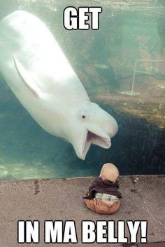 here is a funny cartoon of a whale that wants to eat a lil baby