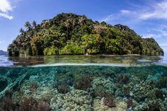 Raja Ampat Tauchsafari - The MataharikuThe Matahariku Coral Reef Ecosystem, Bahamas Island, Paradise Island, Beach Trip, Kayaking, Diving, Tourism, Explore, Adventure