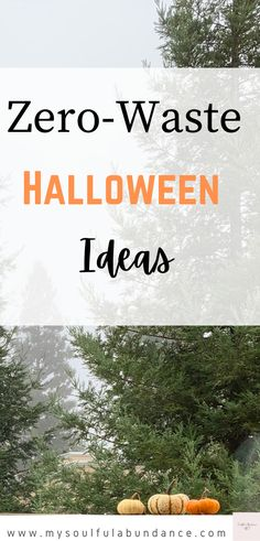 Zero-Waste Halloween Ideas- Looking for ways to be Zero-Waste for the holidays? Learn ways to be more mindful of the earth by using these zero-waste Halloween ideas #sustainableliving #zerowastehalloween #zerowaste