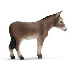 Appaloosa, Yorkshire Terrier, Paint Horse, Horse Art, Breeds Of Cows, Donkey Donkey, Bryer Horses, Shetland, A Christmas Story