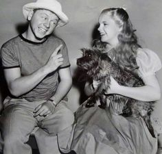 Mickey Rooney visiting Judy Garland and the dog Terry on the set of The Wizard Of Oz.  So his name wasn't Toto after all???