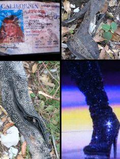 Photos: More Remains Found In Jenni Rivera Plane Crash! Jenni Rivera, Latino News, Romeo Santos, Recent News, Weird World, Founded In, Plane, Diva, Bodies